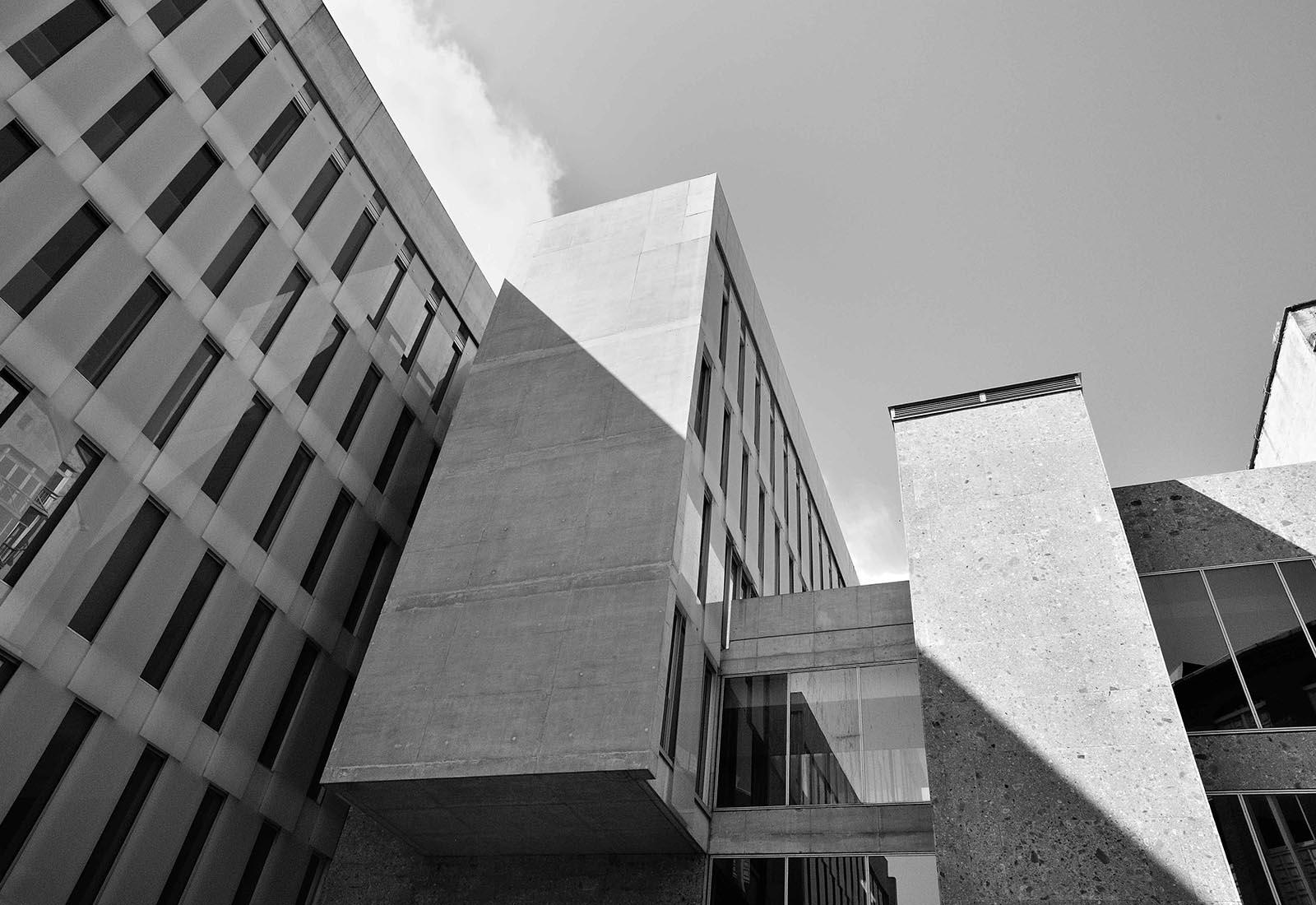 Ampliamento Università Commerciale L. Bocconi a Milano - Vista