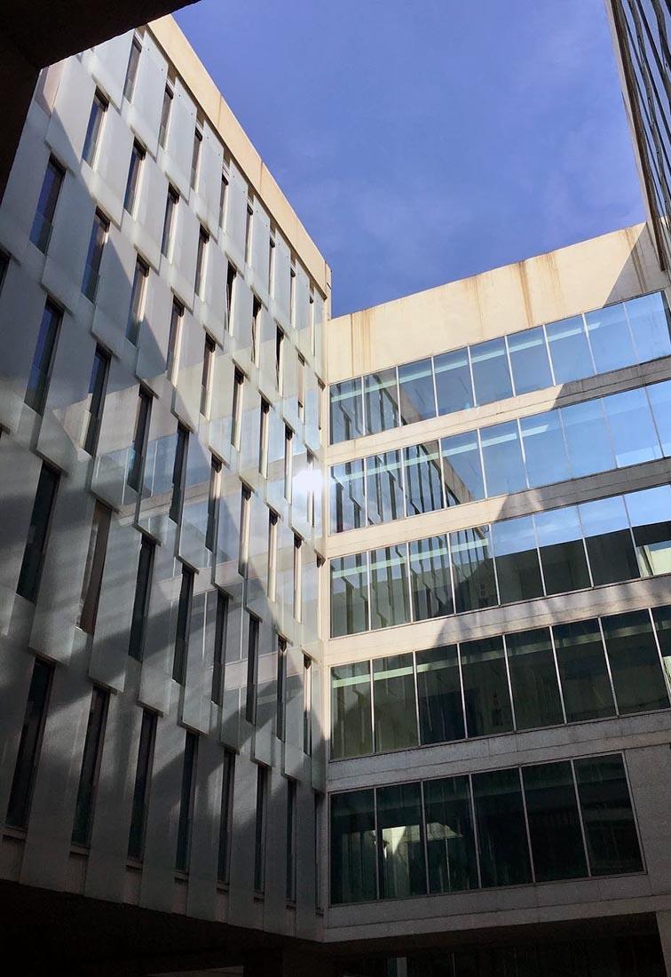 Ampliamento Università Commerciale L. Bocconi a Milano - Dettaglio delle facciate interne
